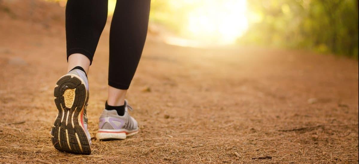 هر روز پیاده روی