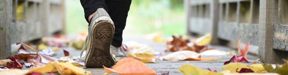 چگونه پیاده روی را شروع کنیم؟